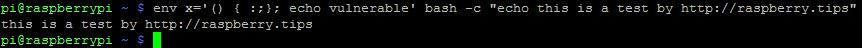 bash-shell-output-fixed