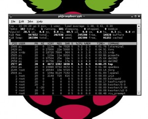 Raspberry pi xrdp download